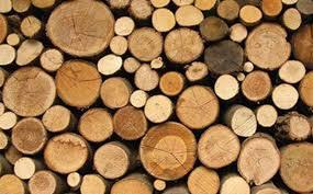 Mơ thấy gỗ